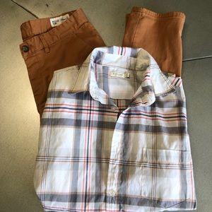 NWOT -SONOMA men's button down shirt white/grey M